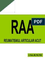 Amg4 Curs Raa