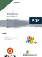 FichasTecnicas-AdrianGutierrez.pdf
