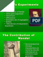 Mendel's Experiments