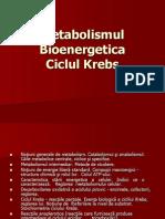 Metabolismul Energetic Ciclul Krebs