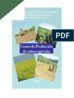 Costos Rubros Agricolas 2009 MAG-DGP-UEA