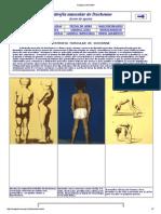 1.2.4 AULA 2 -  Alterações  de PTN`s estruturais e Distrofia Muscular