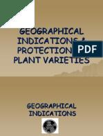 GI & Protection of Plant Varieties