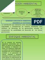 Ppt - Enfoque Ambiental 2014
