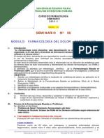 Seminario 06 - Farmacologia Del Dolor - Grupo 02