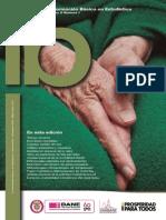 Dane- Revista Ib Informacion Basica en Estadistica
