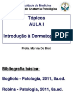 Topicos Dermatopatologia-2014-1sem Alunos (1)
