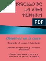 DESARROLLO DE LA VIDA HUMANA original (4).ppt