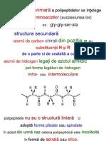 Curs Vi Proteine