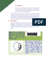 FUNDAMENTO TEÓRICO OPEE33.docx