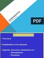 carbohidratos -ppt