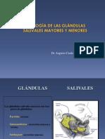 glandula 21-06