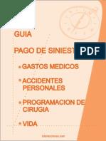 Guia_Rapida_2011.pdf