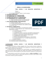 TEMA 14 UN MUNDO GLOBALIZADO_DESARROLLO Y SUBDESARROLLO (1).pdf