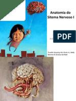 Anatomia Do Sistema Nervoso I