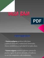 Talla Baja - Copia