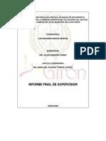 Informe Final Supervision 148 2009 Luis Eduardo