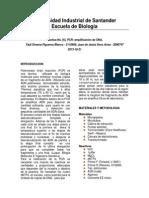 INF. PCR
