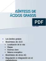 AcidosGrasos