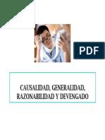 Causalida Generalidad Razonabilidad y Devengado 05022013