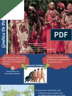 Tema 7 Genetica de Poblaciones[1]