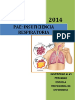 PAE IRC