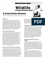 Cats & Wildlife - A conservation dilemma