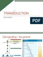 Signal Transduction2013