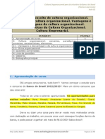 Aula 01 - Cultura Organizacional.pdf