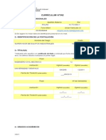 Curriculum Profesional2
