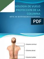 04 - Proteccion de La Columna