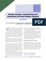 Bacterias Cloacales de Herpetofauna Del Parque Ecológico Chipinque