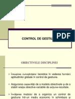 Control de Gestiune 1
