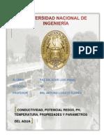 Primer Informe 2013-1