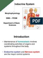 Endocrine system 5 Morphophysiology