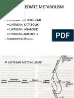9. Intermediate Metabolism
