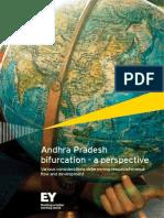 Andhra Pradesh Bifurcation a Perspective