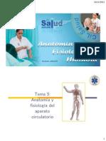 5_aparato_circulatorio
