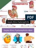 Gejala Klinis Pyelonephritis