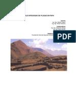 Manejo integrado de plagas en papa en la provincia de Jujuy (Arg.)