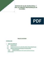 Conceptos Básicos en Salud Ocupacional y Sistema General de Riesgos Profesionales en Colombia.docx