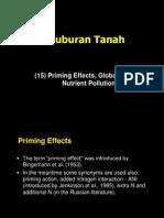 (15) Priming Effect