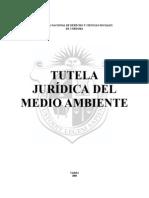 Kemelmajer_derecho Al Ambiente