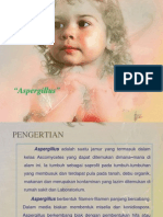 Aspergillus