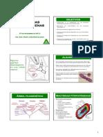 Bacterias2010.pdf