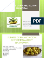 Fuentes de Financiacion Municipal