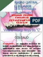 Colgajo. Viviana Hidalgo