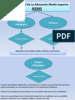Modelo Pedagógico y Enfoque Que Sustenta La RIEMS