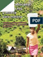 1291751039_Publicación Palma Africana