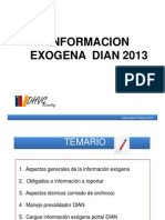 Exógena+DIAN+2013